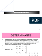 Clases Determinantes