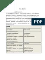 MIEL DE CAÑA PROTECTO TERMINADO.docx