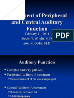 Assessment of Peripheral and Central Auditory Function