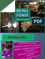 hongos diapositivas