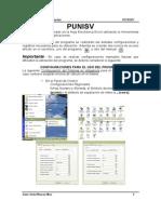 Manual Punisv10 2014