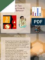 measuring crime behaviour
