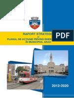Raport Strategic Si Paed in Municipiul Arad