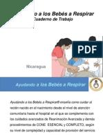 Ayudando a Los Bebés a Respirar PRESENTACION Por Temas