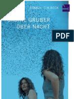 Sabine Gruber - Über Nacht
