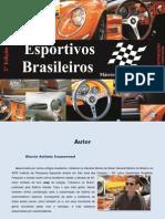 Carros Esportivos Brasileiros - Marcio Antonio Sonnewend