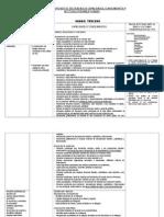 Cartel de Contenidos y Capacidades - Tercero 2013 (2)