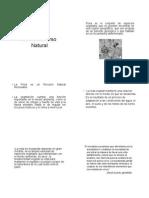 2006 RECURSO FLORA.pdf