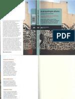 190349564-Gustavo-Lins-Riveiro-Antropologia-como-cosmopolitica.pdf
