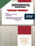 Colgajo Inguinal