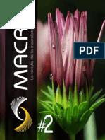 Revista+Macro+ISSU