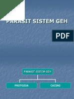 Parasit Sistem GEH Protozoa