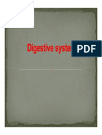 Unit 2 - Digestive System