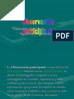 observacion participante