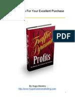 Traffic Pyramid Profits