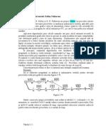 OPTIMIZAREA COSTULUI1(1)