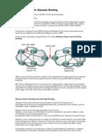 33596497 Routing Protocols