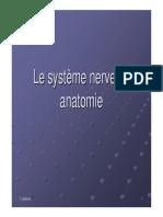 Anatomie Systeme Nerveux
