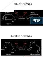 Glicólise / Via Glicolitica