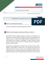estrategia1 (2).pdf