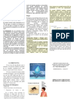 Triptico Agua Dengue y Chiquingunya