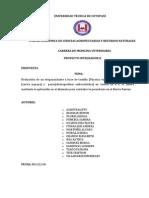 propuesta imprimir.docx