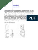 Teknik Amputasi Extremitas.doc