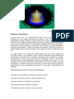 Artigo - Energia Orgônica (05 pgs)