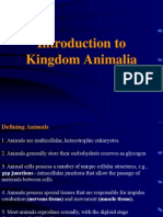 3-Kingdom Animalia.ppt