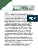 2009 (J) Cory_Doctorow_Kis_testvér.pdf