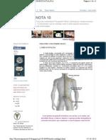 Fisioterapianota10.Blogspot.pt 2010 09 Lombociatalgia.ht