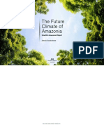 The Future Climate of Amazonia Report
