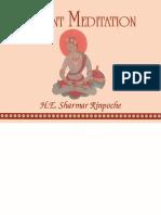 Shamar Rinpoche Meditation