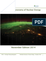 Worldwide Panorama of Nuclear Energy