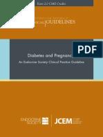 120513 DiabetesPregnancy FinalD 2013