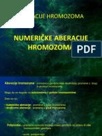 Numericke Aberacije Hromozoma