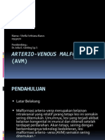 Arterio-Venous Malformation (AVM)