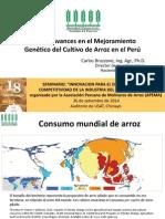 Avances en El Mejoramiento Genético Del Cultivo de Arroz en el Perú