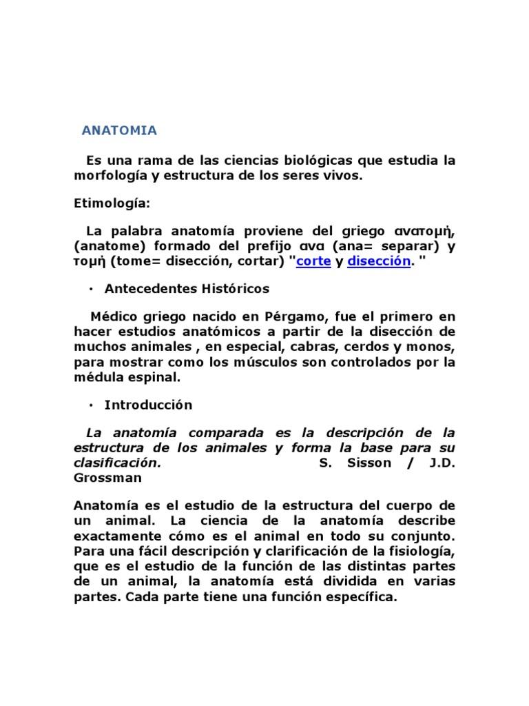 Anatomía Veterinaria Básica