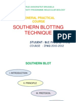 southern blotting technique