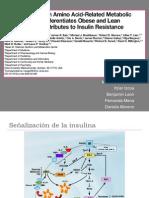 PPT. BCAA. Insulin Resistance