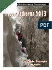 Rapport Picos 2013.pdf