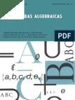 Estructuras-Algebraicas.pdf