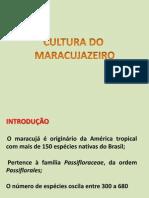 AULA 1 Introdução maracujá.ppt