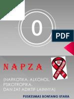 N a P Z a Metha 2011