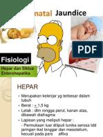 BBDM 2.3 Skenario 1 Fisiologi