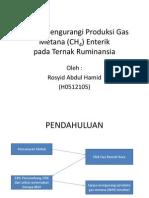 Upaya Mengurangi Produksi Gas Metana (CH4)