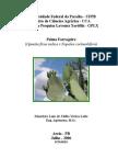 palma[1].pdf