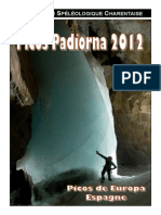 Rapport PiCos 2012