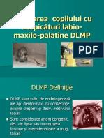 Despic-âturi LMP curs rezi.ppt
